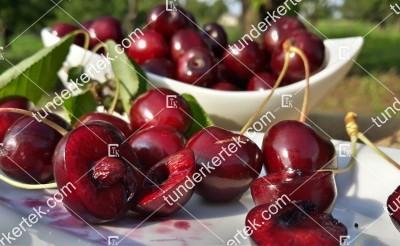Katalin cseresznye