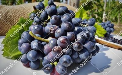 Esther csemegeszőlő