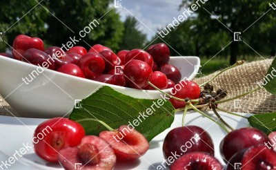 Regina cseresznye