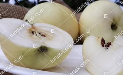 Fehér klára alma