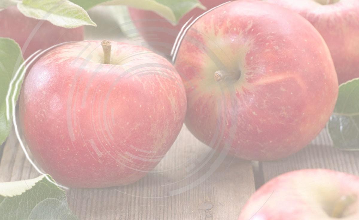 Marosszéki piros páris alma