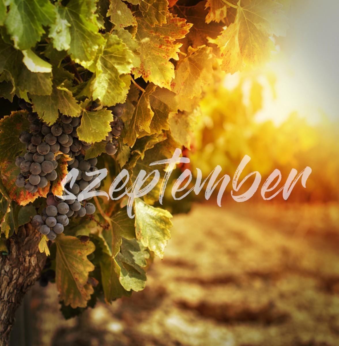 Mi történik szeptemberben?