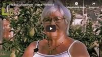 Vásárlói vélemények - Várnai Vilmosné