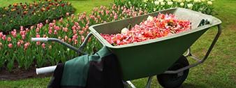 Kertészeti eszközök webáruháza