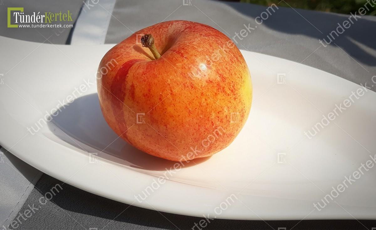 Fahéj alma