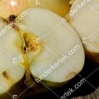 termek196/fontos-alma-mm106-196-357103786-1200.jpg / Nyári fontos alma