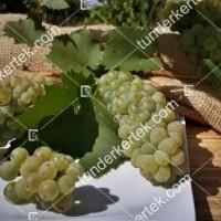 termek2174/olaszrizling-csemegeszolo-2174-76879681-1200.jpg / Olaszrizling csemegeszőlő