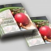 termek2255/ultetesi-es-gondozas-utmutato-gyumolcsfakhoz-2255-1213715327-1200.jpg / Ültetési és gondozási útmutató gyümölcsfákhoz