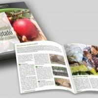 termek2255/ultetesi-es-gondozas-utmutato-gyumolcsfakhoz-2255-320379708-1200.jpg / Ültetési és gondozási útmutató gyümölcsfákhoz
