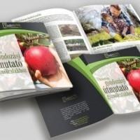termek2255/ultetesi-es-gondozas-utmutato-gyumolcsfakhoz-2255-559862558-1200.jpg / Ültetési és gondozási útmutató gyümölcsfákhoz