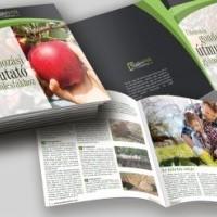termek2255/ultetesi-es-gondozas-utmutato-gyumolcsfakhoz-2255-901383031-1200.jpg / Ültetési és gondozási útmutató gyümölcsfákhoz