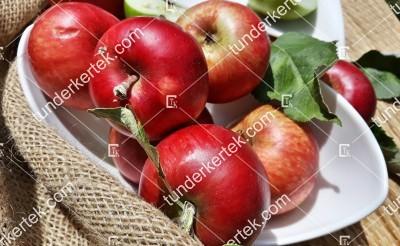 Rákoscsabai borízű alma