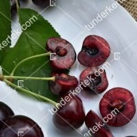termek252/hedelfingeni-orias-252-1326538068-1200.jpg / Hedelfingeni óriás cseresznye