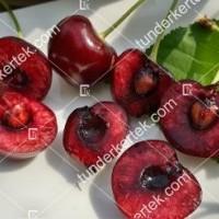 termek252/hedelfingeni-orias-252-1377809313-1200.jpg / Hedelfingeni óriás cseresznye
