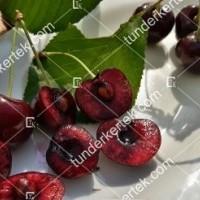 termek252/hedelfingeni-orias-252-1805973565-1200.jpg / Hedelfingeni óriás cseresznye