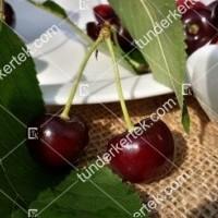 termek252/hedelfingeni-orias-252-1953622113-1200.jpg / Hedelfingeni óriás cseresznye