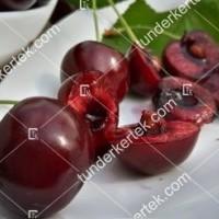 termek252/hedelfingeni-orias-252-839238464-1200.jpg / Hedelfingeni óriás cseresznye