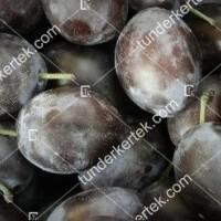 termek301/loszemu-szilva-301-718081163-1200.jpg / Lószemű szilva