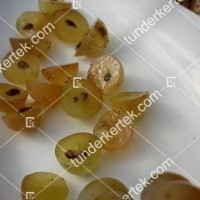 termek341/zalagyongye-csemegeszolo-341-958833091-1200.jpg / Zalagyöngye csemegeszőlő