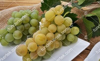 Palatina (Augusztusi muskotály) csemegeszőlő