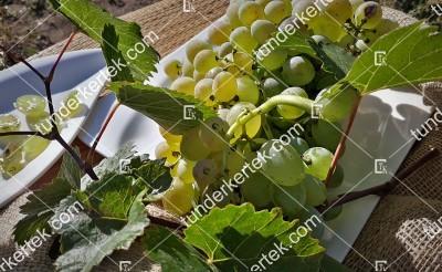 Teréz (R-58) csemegeszőlő