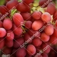 termek383/crimson-seedless-383-1423932527-1200.jpg / Crimson seedless