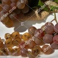 termek423/generosa-423-195210655-1200.jpg / Generosa szőlő