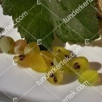 termek427/pinot-blanc-427-1603814734-1200.jpg / Pinot blanc