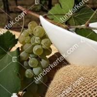 termek427/pinot-blanc-427-535460893-1200.jpg / Pinot blanc