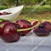 termek477/carmen-cseresznye-477-1142285775-1200.jpg / Carmen cseresznye