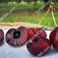 termek477/carmen-cseresznye-477-148646490-1200.jpg / Carmen cseresznye