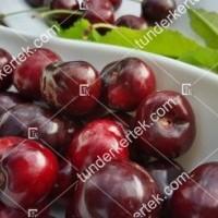 termek477/carmen-cseresznye-477-173375913-1200.jpg / Carmen cseresznye