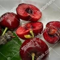 termek479/sunburst-cseresznye-479-2028760730-1200.jpg / Sunburst cseresznye
