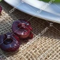 termek481/csengdi-csokros-481-1772305708-1200.jpg / Csengődi csokros