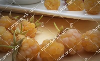 Fertődi aranyfürt (sárga) málna