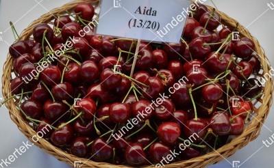 Aida cseresznye