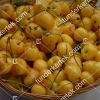 termek508/ljana-fehercseresznye-508-1935198834-1200.jpg / Ljana fehércseresznye