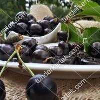 termek511/negus-cseresznye-511-1522479716-1200.jpg / Négus cseresznye