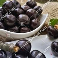 termek511/negus-cseresznye-511-1744867002-1200.jpg / Négus cseresznye
