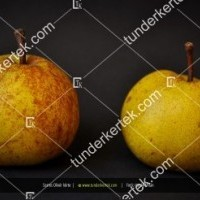 termek52/serres-oliver-korte-52-669384235-1200.jpg / Serres Olivér körte