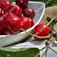 termek580/regina-cseresznye-580-1113380082-1200.jpg / Regina cseresznye