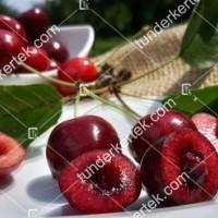 termek580/regina-cseresznye-580-665651674-1200.jpg / Regina cseresznye