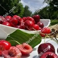 termek580/regina-cseresznye-580-675275501-1200.jpg / Regina cseresznye