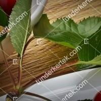 termek601/sandor-cseresznye-601-1244041982-1200.jpg / Sándor cseresznye