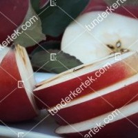 termek610//idared-610-1291656203-1200.jpg / Idared