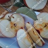 termek610//idared-610-2115651635-1200.jpg / Idared