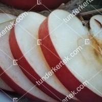 termek610//idared-610-303412619-1200.jpg / Idared