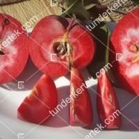 termek811//vorosbelu-alma-811-285639327-1200.jpg / Vörösbélű alma