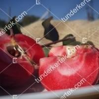 termek811//vorosbelu-alma-811-516676922-1200.jpg / Vörösbélű alma