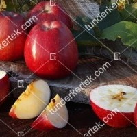 termek815//delicious-815-1866341679-1200.jpg / Delicious (régi fajta)
